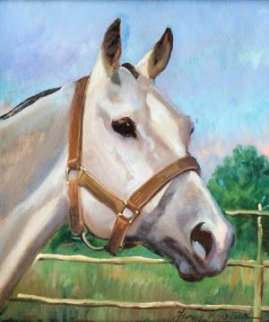 Jerzy Kossak (1886 Kraków - 1955 tamże), Głowa konia