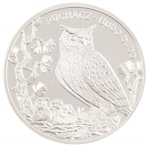 20 zł, Puchacz, 2005