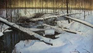 Konrad Hamada - Las zimą