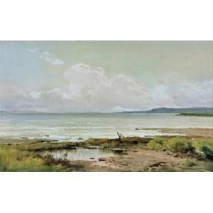 Józef RAPACKI (1871-1929), Pejzaż z mokradłami