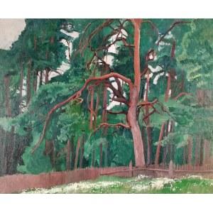 Stanisław CZAJKOWSKI (1878-1954), Pejzaż z drzewami