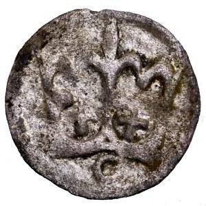 Kazimierz Jagiellończyk, denar koronny
