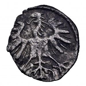 Zygmunt II August, denar 1554, Wilno