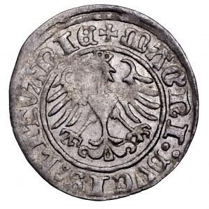 Zygmunt I Stary, półgrosz 1510, Wilno