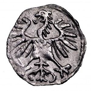 Zygmunt II August, denar 1554, Wilno - rzadki i piękny