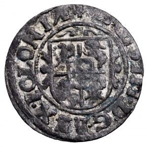 Zygmunt III Waza, szeląg 1626, Bydgoszcz - śliczny