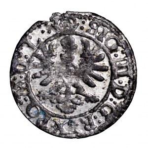 Zygmunt III Waza, szeląg 1623, Wilno - piękny, Pogoń