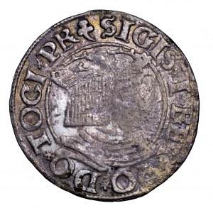 Zygmunt I Stary, grosz 1535, Gdańsk