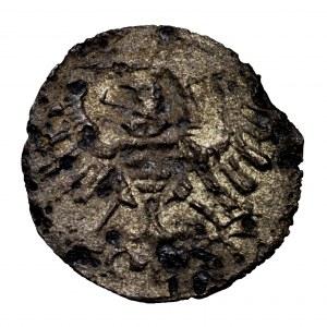 Zygmunt I Stary, denar bez daty, Toruń