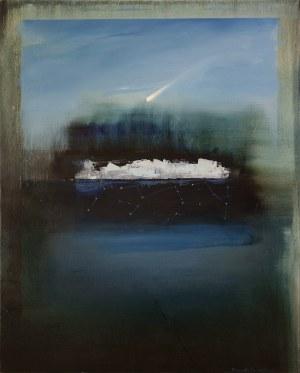 Magdalena Daniec (ur.1974), Ostatni kawałek lodu, 2019