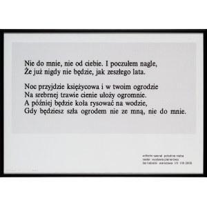 Wilhelm SASNAL, Południe nieba, 2003 r.
