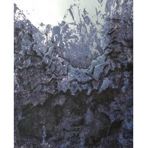 Daniel Białowąs (ur. 1975), Planet B-612 AL, 2020
