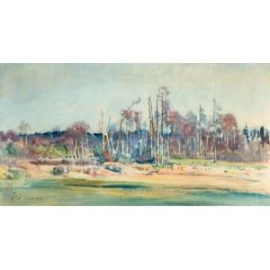 Julian Fałat (1853 Tuligłowy - 1929 Bystra), Osiek, 1913 r.