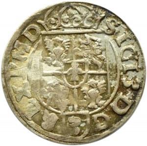 Zygmunt III Waza, półtorak 1617, Bydgoszcz, UNC/UNC-, piękna kolorowa patyna