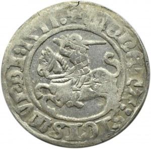 Zygmunt I Stary, półgrosz 1511, Wilno, bardzo ładny