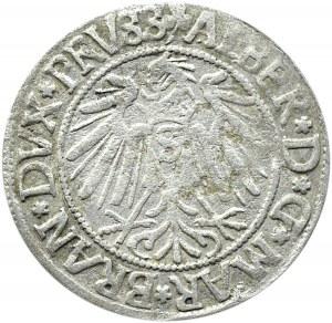 Prusy Książęce, Albrecht, grosz pruski 1542, Królewiec