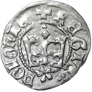 Kazimierz IV Jagiellończyk, półgrosz, Kraków, odwrócona litera