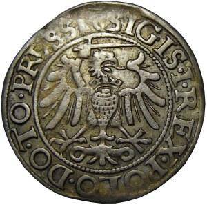 Zygmunt I Stary, grosz 1540, Elbląg, ładny egzemplarz