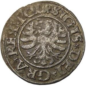 Zygmunt I Stary, szeląg 1531, Gdańsk