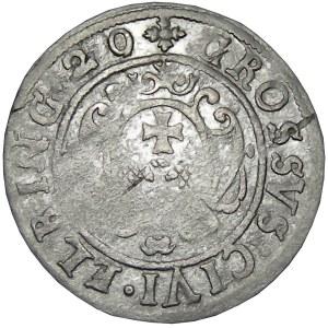Okupacja szwedzka, Gustaw II Adolf, grosz okupacyjny 1629, Elbląg