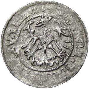 Zygmunt I Stary, półgrosz 1513, Wilno, R4!