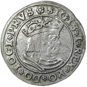 Zygmunt I Stary, grosz 1529, Toruń, PRVS/PRVSS