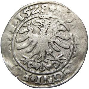 Zygmunt I Stary, grosz 1528, Kraków