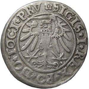 Zygmunt I Stary, grosz 1534, Elbląg, (R2)