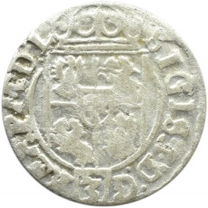 Zygmunt III Waza, półtorak 1625, Bydgoszcz,