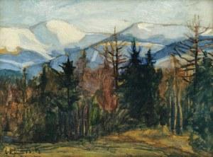 Wilhelm MITARSKI (1879-1923), Pejzaż górski