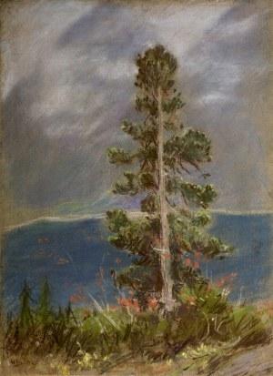 Władysław Serafin (1905-1988), Limba nad Morskim Okiem
