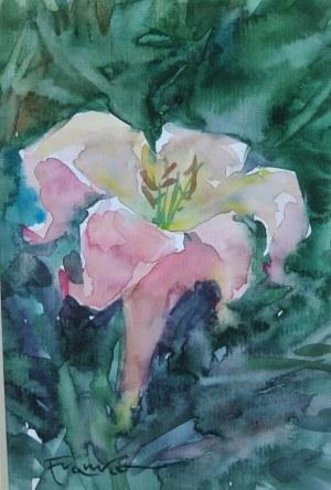 Aleksander Franko, Kwiat
