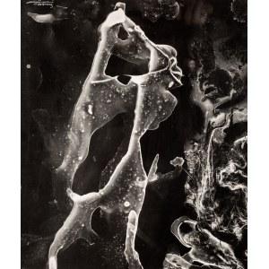 Edward HARTWIG (1909 - 2003), Z innej planety, 1985