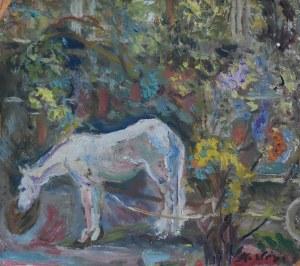 Konrad Srzednicki (Ur.1894 - Zm.1993), Bez tytułu, 1953
