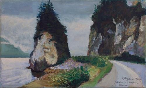 Rafał Stryjecki (XX/XXI wiek), Skała - Samotność, 2007