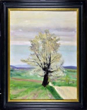 Aneri Irena Weissowa (1888-1981), Pejzaż z drzewem