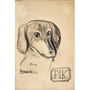 Kazimierz Podsadecki (1904 - 1970), Jamnik PIK, 1936