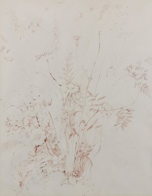 Autor nieokreślony, XX w., Studium roślin