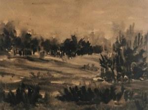 Malarz nieokreślony, XX w., Pejzaż z drzewami