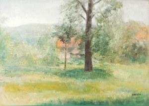 Irena WEISS - ANERI (1888-1981), Pejzaż wiosenny