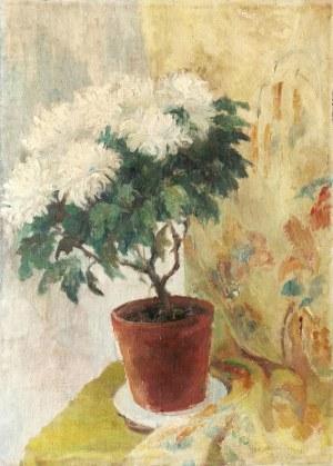 Malarz nieokreślony, XX w., Kwiaty w doniczce, 1937