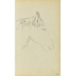 Jacek Malczewski (1854-1929), Głowa konia ujęta z prawego boku