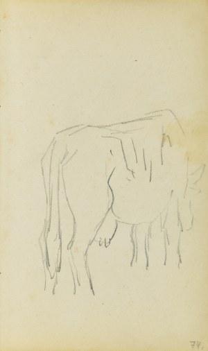 Jacek Malczewski (1854-1929), Szkic krowy widzianej z tylnego, prawego trzy-czwarte