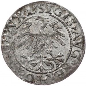 Zygmunt II August, półgrosz 1560, Wilno, L/LITV
