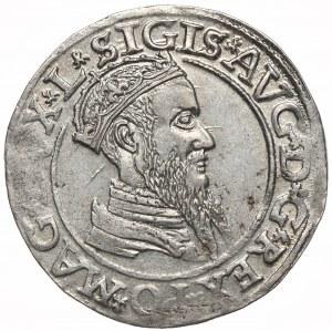 Zygmunt II August, czworak 1566, Wilno, L/LIT