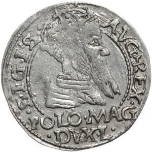 Zygmunt II August, grosz na stopę polską 1566, Tykocin, L/LIT