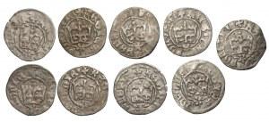 Kazimierz IV Jagiellończyk (1446-1492) - zestaw 9 półgroszy bez daty