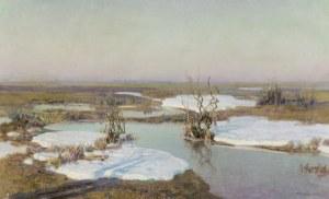 Ziomek Teodor, ROZTOPY, 1919