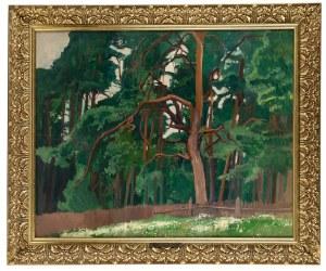 Stanisław Czajkowski (1878 Warszawa - 1954 Sandomierz), Pejzaż z drzewami
