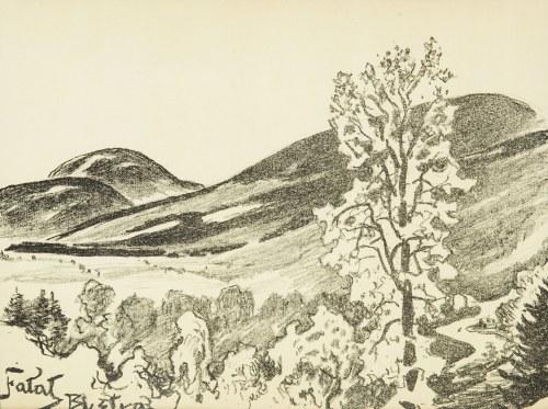 Julian Fałat (1853 Tuligłowy - 1929 Bystra), Skrzyczne widziane z Bystrej